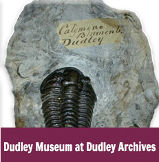 Dudley Museum at Dudley Archives